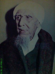Habib Zein
